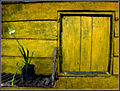 Flickr - Sukanto Debnath - The Yellow Window.jpg