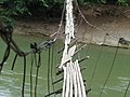 Footbridge at Vang Vieng, Laos - panoramio.jpg