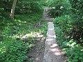 Footbridge in Perrywood - geograph.org.uk - 1371844.jpg