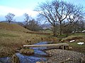 Footbridge over Dale Beck - geograph.org.uk - 141298.jpg