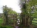 Footpath across the fields - geograph.org.uk - 760178.jpg
