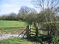 Footpath near Iddinshall Rough - geograph.org.uk - 391409.jpg