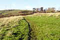 Footpath near Naptor - geograph.org.uk - 80250.jpg
