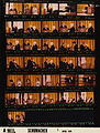Ford A9033 NLGRF photo contact sheet (1976-04-01)(Gerald Ford Library).jpg