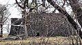 Fort Worth Nature Center Broadview Shelter.jpg