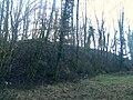 Fort de Planoise - annexe sud-ouest - massif de terre abris-magasin.JPG