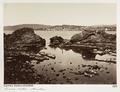 Fotografi från Rive de l'oest, Cannes - Hallwylska museet - 107217.tif