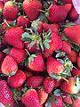Fresas con tallo.jpg