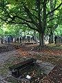 Friedhof Steinkluppe Forum.jpg
