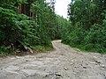 G. Miass, Chelyabinskaya oblast', Russia - panoramio (145).jpg