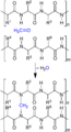 Galalith Synthesis SCHEMATIC V1.png