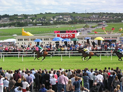 Galway races - panoramio