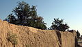 Garden Way - Wall - trees - streamlet - 17 Shahrivar st - Nishapur 21.JPG