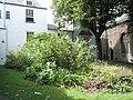 Garden opposite St Peter and St Mary, Barnstaple - geograph.org.uk - 936651.jpg