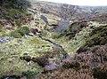 Gargwy Fawr - geograph.org.uk - 645343.jpg