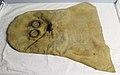 Gas mask (AM 783376).jpg