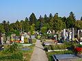 Gersthofer Friedhof, Wien Währing.jpg