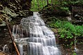 Gipson Falls (Upper Drop) (9226954532).jpg