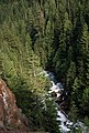 Glacier Creek, Mt Baker Snoqualmie National Forest (36380362623).jpg