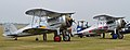 Gloster Gladiator pair - 2013 Flying Legends (13930896989).jpg