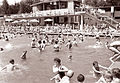 Gneča na Mariborskemu otoku 1961 (4).jpg