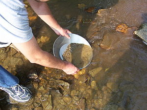 Gold panning - Panning for gold in a creek bed