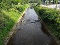 Gottleuba- River in Pirna 94319901.jpg