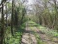 Green Lane (Track) looking South - geograph.org.uk - 397202.jpg