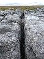 Gryke on the limestone pavement - geograph.org.uk - 541389.jpg