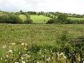 Gubnacreeny Townland - geograph.org.uk - 1422508.jpg