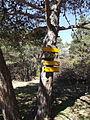Guidepost Col de Cuberselle.jpg