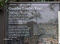 Gumbo Limbo Trail at Royal Palm^ - panoramio.jpg