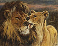 Gustav Wertheimer - Couple de lions.jpg