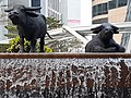 HK 中環 Central 交易廣場 Exchange Square sculpture Water Buffalo waterfall January 2020 SS2 01.jpg