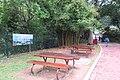 HK 鰂魚涌 Quarry Bay 柏架山道 Mount Parker Road 林邊屋 Woodside frontland garden outdoor tables and bench May 2018 IX2.jpg