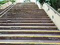 HK CWB 銅鑼灣 Causeway Bay 高士威道 Causeway Road HKCL Hong Kong Central Library outdoor stairs September 2019 SSG.jpg
