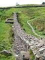 Hadrians Wall - geograph.org.uk - 946996.jpg