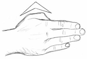 Strike (attack) - Ridge hand
