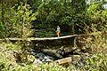Hanging bridge, Chirripo, Costa Rica 1.jpg