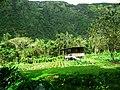 Hawaii Big Island Kona Hilo 220 (7025128093).jpg