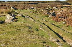 Haytor Granite Tramway near Haytor (8691).jpg