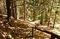 Heilige Stiege - Elbsandsteingebirge - panoramio (13).jpg