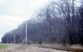 Heiligendamm Molli-Strecke Evangelische Waldkirche 1985 0065.png