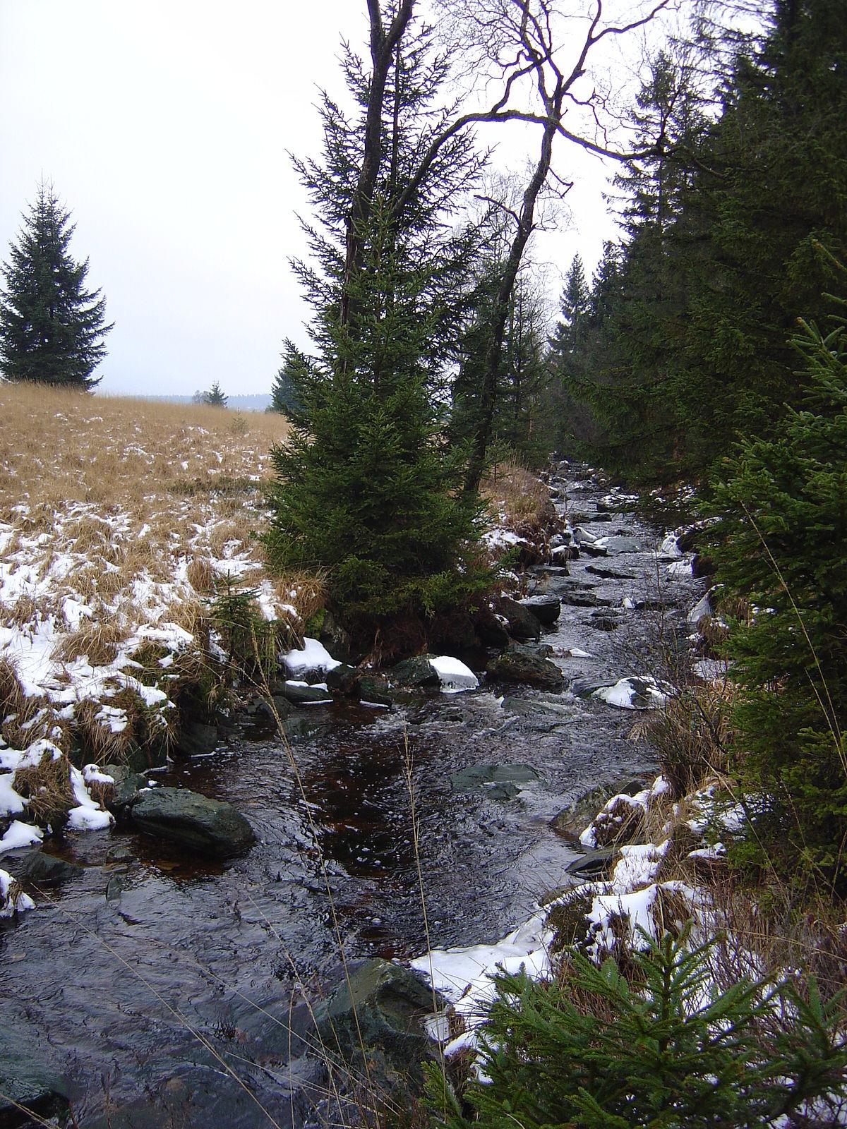 hill stream wikipedia