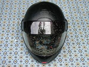 Roadkill on a helmet