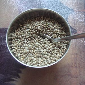 Hemp seeds in a small bowl with teaspoon