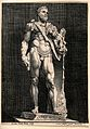Hercules. Engraving by N. Braeu. Wellcome V0035861.jpg