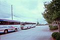 Hernando THE Bus - Red Blue and Brooksville Shuttle.JPG