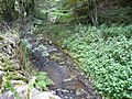 Hodgelane Brook - geograph.org.uk - 562082.jpg