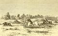 Hog Hunting in the East (1867) JT Newall I.png